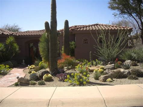 Desert Landscape Ideas For Backyards by Desert Landscaping Ideas