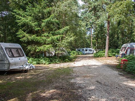 southern motor homes show ticket offers the cing and caravanning club