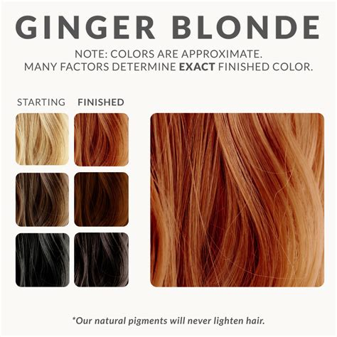 ginger hair chart ginger blonde henna beard dye henna color lab 174 henna