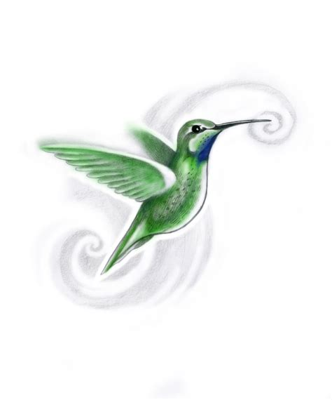 small hummingbird tattoos hummingbird images designs