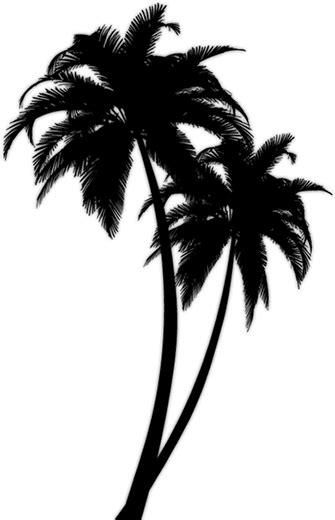 140 6 tattoo designs palm tree design fgfff tree