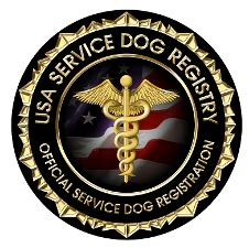 ada service registration service sales and certification ocala florida seizure detection