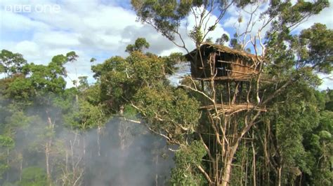 korowai tree houses korowai people one of the last tribes in the world to