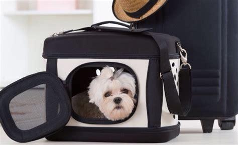 trasportino aereo cabina viaggi in aereo s 236 ai cani in cabina mianotour