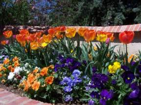 Low Maintenance Flower Garden How To Design A Low Maintenance Garden Landscape The Lovely Plants