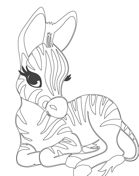 cute zebra coloring page cute zebra coloring pages