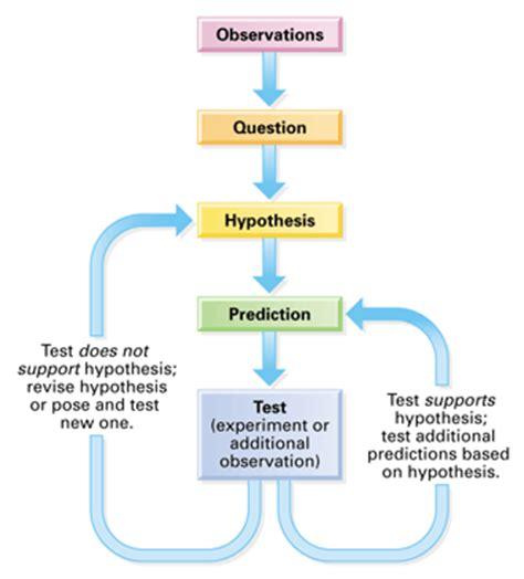scientific method diagram scientific method flow chart hypothesis based science