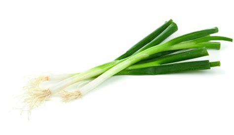 green onion del monte philippines