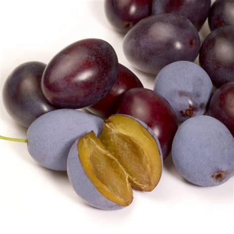Plum Diet top 50 summer diet foods for weight loss shape magazine