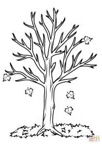fall tree template fall tree coloring page free printable coloring pages