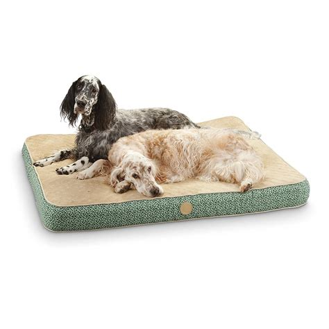 guide gear pillow top gusset dog bed 657471 kennels k h 174 superior orthopedic bed green 224501 kennels