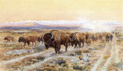 Buffalo L by Charles Marion Arts 19th C The List