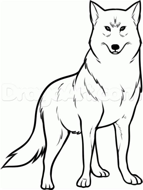 Simple Wolfis M how to draw wolf kiba step by step anime characters