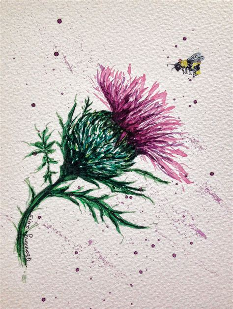 scottish thistle tattoo watercolour of a scottish thistle with bee possible