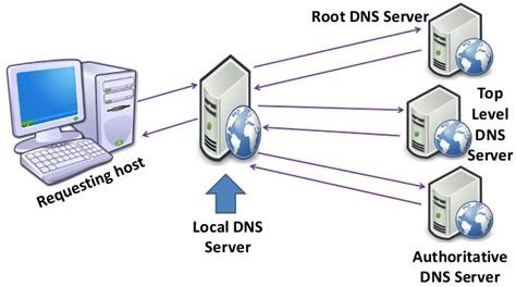 dns web hosting sun