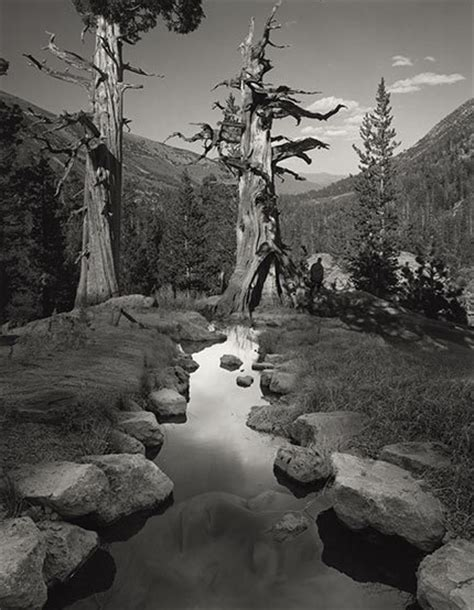 photoshop tutorial jerry uelsmann pioneer of surreal photography