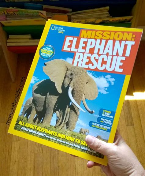 libro mission elephant rescue mission world elephant day help save the elephants