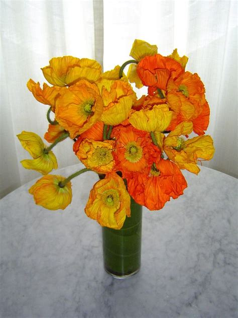 How To Arrange Flowers In A Vase by 1000 Images About How To Arrange Flowers In A Vase On