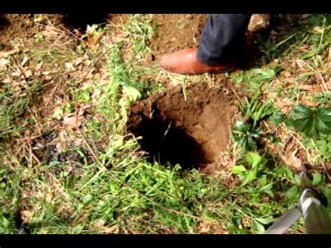 dig man digging in rocky soil youtube