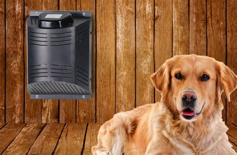 best dog house heater best 25 house air conditioner ideas on pinterest air conditioners cer air