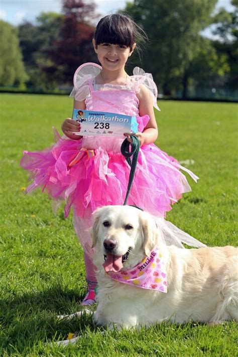 joshua s house golden retriever coventry leofric lions walkathon at war memorial park coventry telegraph