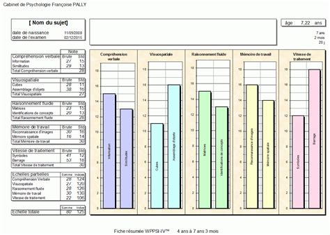 wppsi iv report template 28 wppsi iii sle report memo format template sf6