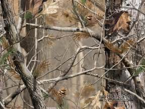 Hunting Blind Netting Realtree Camo 1280 1024 Wallpaper