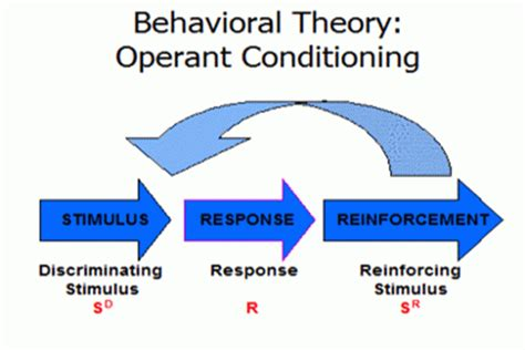 Behavior Modification Therapy by Therapy 101 Behavior Modification And Dealing With