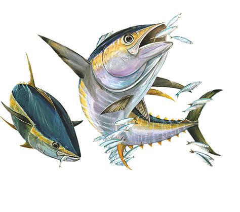 yellowfin boat decals high quality vinyl fish decal yellow fin tuna flying fish