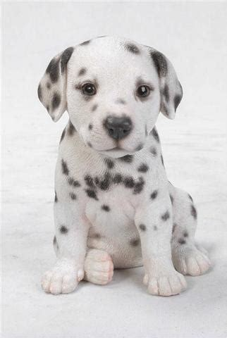 how much are dalmatian puppies dalmatian puppy statue johnnyappleseedhomeandyard