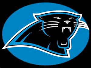 panther colors baldufa carolina panthers