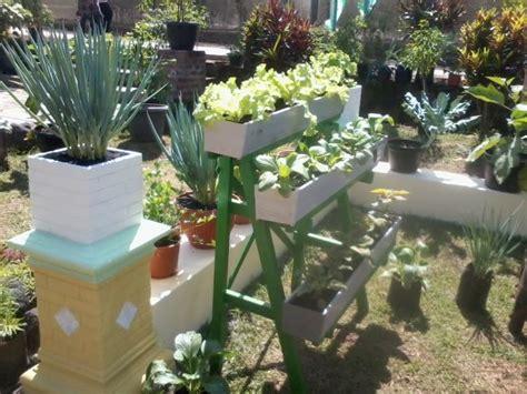Ikea Nejkon Pot Tanaman Putih tanaman bawang di rumah 5 inspirasi tanaman sayur di