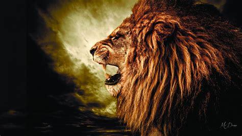 lions roar lion roaring wallpaper galleryimage co