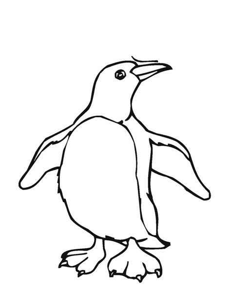 blank penguin coloring page penguin template animal templates free premium templates