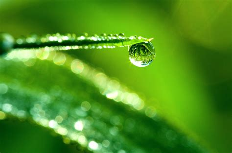 Macro Me - water drop hd wallpaper and background 2560x1700