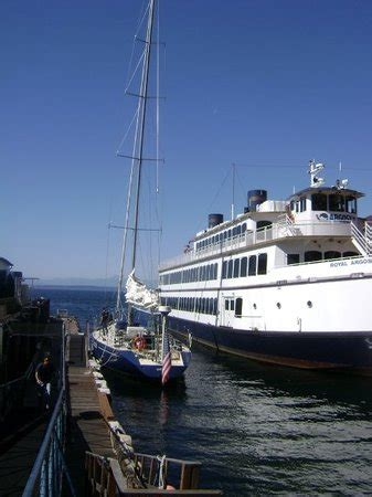 boat tours in seattle wa emerald city charters seattle wa top tips before you