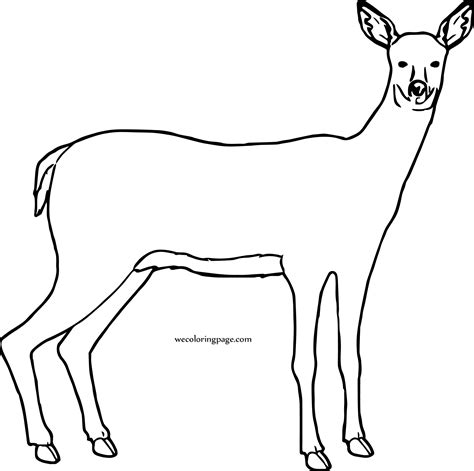 uses for coloring book pages deer free to use coloring page wecoloringpage