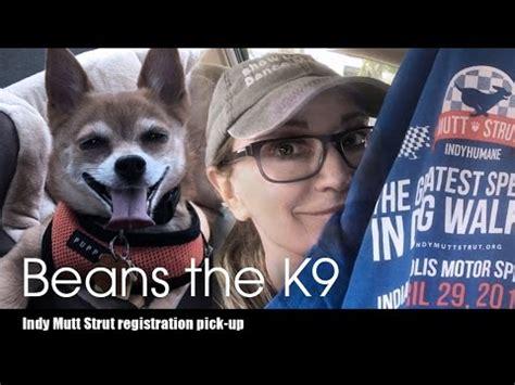 k9 registration beans the k9 indy mutt strut 2017 registration