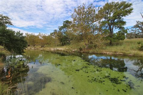 southern comfort ranch 200 acre southern comfort ranch for sale in fredericksburg tx