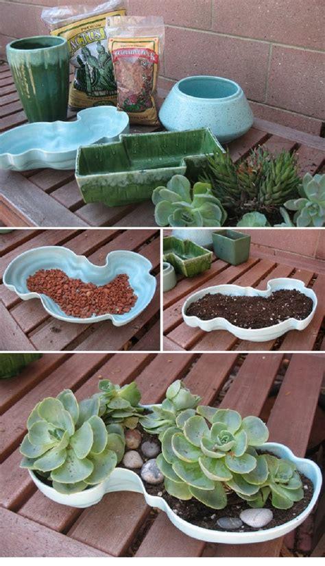 how to make a succulent planter 10 diy succulent plant ideas