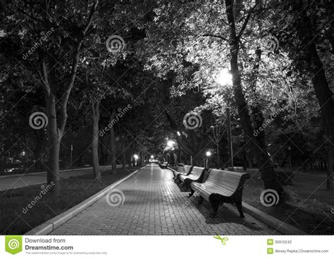 night park black white stock photo image  overnight