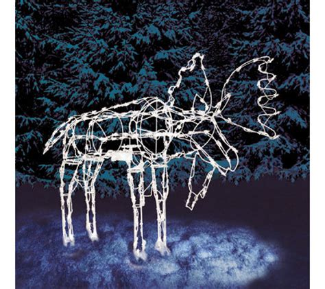 Outdoor Lighted Moose 48 Quot Animated Moose Wire Frame With 210 Lights Qvc