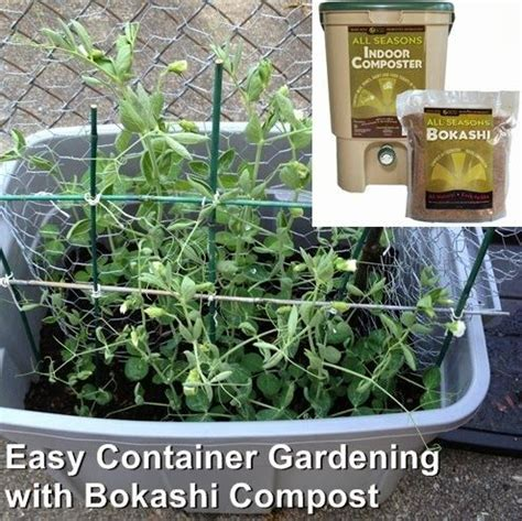 easy container gardening 50 best images about farming on gardens