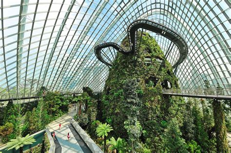 gardens by the bay most complete guide credso singapore