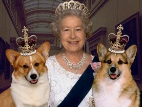 queen elizabeth ii corgis happy 90th birthday your majesty queen elizabeth in honor