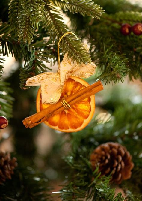 xmas tree smells like oranges christmas 2014 pinterest