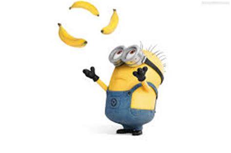 minions banana testo sicuro di sapere di cosa odora una banana slowine