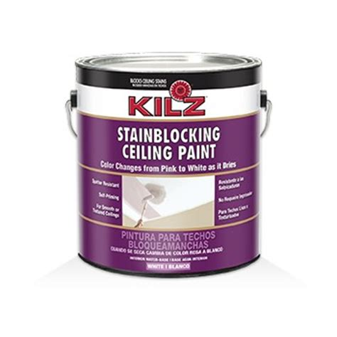 buy the masterchem 68041 ceiling paint stain blocking