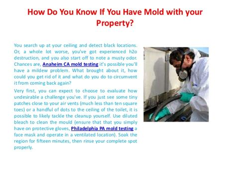 How Do You Detox Your From Black Mold by How Do You If You Mold With Your Property