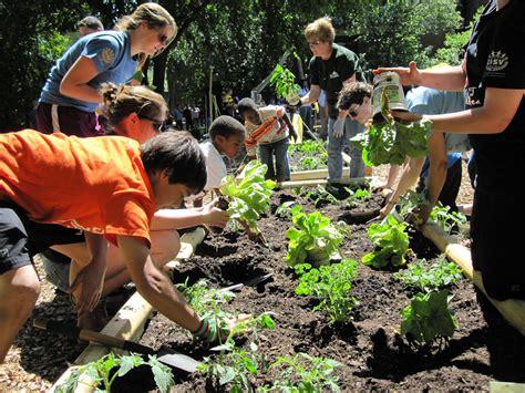 Community Vegetable Gardens Www Pixshark Com Images Vegetable Gardening In Hawaii